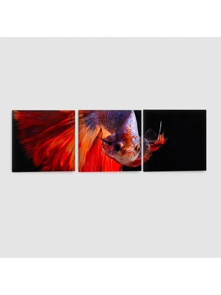 Pesce Combattente - Quadro su tela - 3 Pannelli con orologio