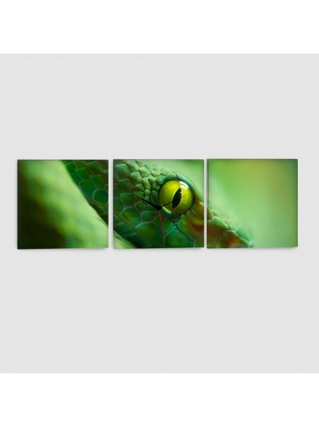 Serpente - Quadro su tela - 3 Pannelli con orologio