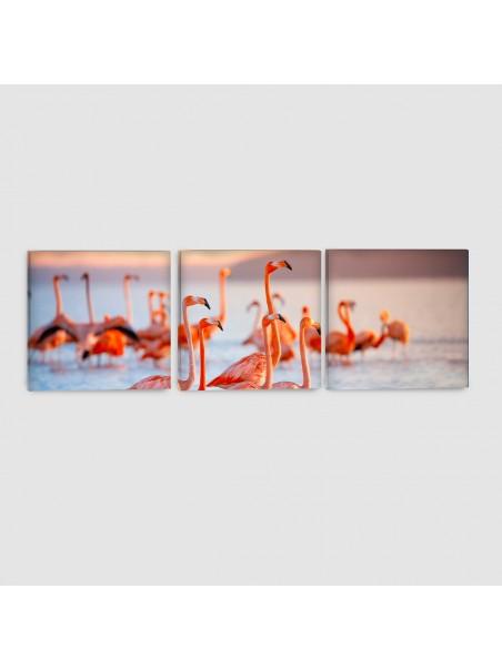 Fenicotteri - Quadro su tela - 3 Pannelli