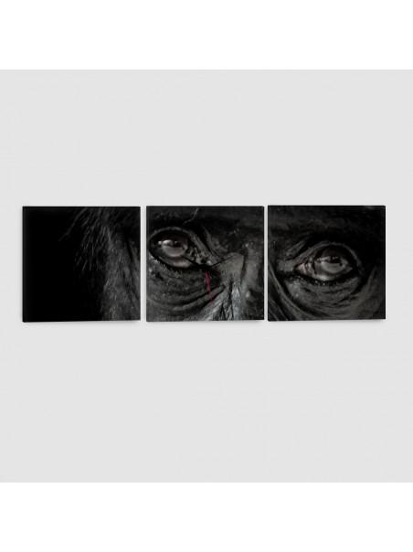 Scimmia - Quadro su tela - 3 Pannelli con orologio